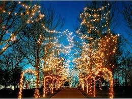 pyramid hill christmas lights holiday lights on the hill oh ohio find it here