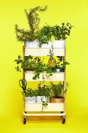 45 best springtime favorites images on pinterest gardening tips
