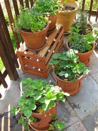 container gardening with wood crate and terracotta pots