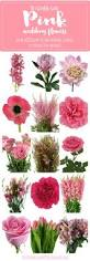 best 25 pink flower names ideas on pinterest blush flowers