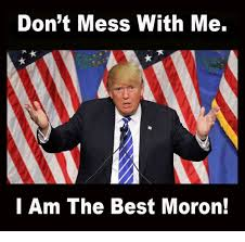 Moron Meme - don t mess with me i am the best moron best meme on esmemes com