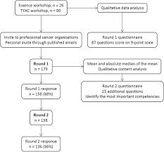 modified international e delphi survey to define healthcare