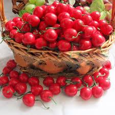 Home Decor House Parties Aliexpress Com Buy 50 Pcs Plastic Artificial Cherry Crafts Fruit