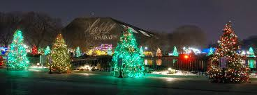 brookfield zoo winter lights where to find the best christmas decorations in chicago