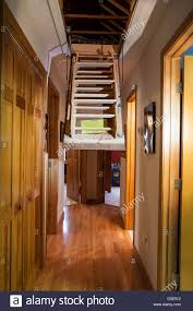 pull down attic stairs trap door in hallway of upscale