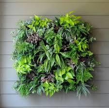 69 best vertical garden images on pinterest house plants