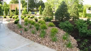best drought tolerant landscape design ideas contemporary