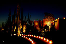 Scottsdale Az Botanical Gardens by Arizona Archives Wander Magazine