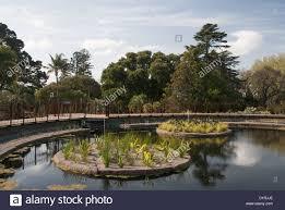 Melb Botanical Gardens by Royal Botanical Gardens Melbourne Stock Photos U0026 Royal Botanical