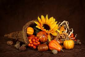 cornucopia thanksgiving photography abstract background