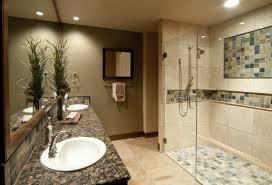 bathroom ceiling light shower door vessel sink plants in pot