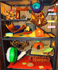 halloween cage decorations hamster diy youtube ratropolis fall decorating ideas ratties pinterest