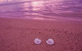 wallpaper luxury pink luxury pink beach sunset wallpaper the most beautiful beach