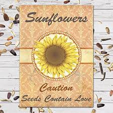 sunflower seed wedding favors 25 individual seed favor packets sunflowers great