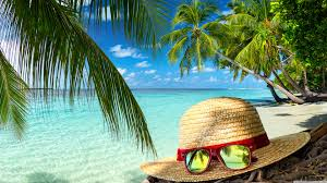 Palm Tree Wallpaper Clear Sea Water Beach Hat And Sunglasses Palm Trees Hd Desktop