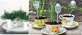 Flower Pot Wedding Favors - wedding favors that can be used as centerpieces budget brides