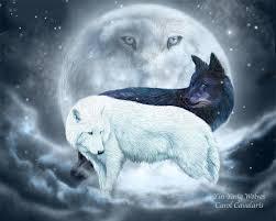 yin yang wolves by romanceworks mixed medium animals