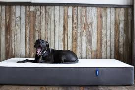 Buy Bed Online Here U0027s Why You Should Buy Your Next Mattress Online U2014yes Really