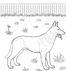 german shepherd sitting coloring page free printable coloring pages