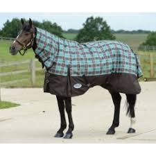 Outdoor Rugs For Horses Rugs Uk Furniture Shop