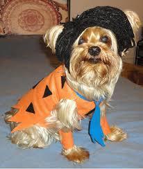 Flintstones Halloween Costumes Fred Flintstone Halloween Costumes Dog Dog Costumes