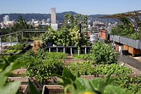 portland neighborhoods guide portland and oregon solar eclipse guide travel portland
