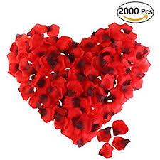 Valentines Day Stage Decor by Amazon Com Obmwang 2000 Pcs Dark Silk Rose Petals Wedding Flower