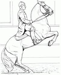 the 3rd template is this great lipizzaner and rider coloring sheet