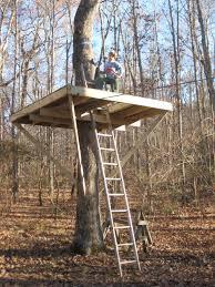 single tree treehouse treehouse corbins treehouse treehouses lily