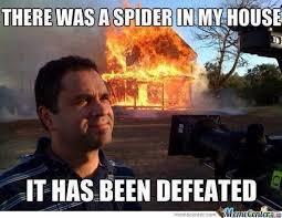 I Saw A Spider Meme - spider in house meme mne vse pohuj