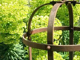 steel garden obelisks image for galvanised steel garden