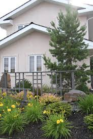 small yard landscaping earthworm landscape design co