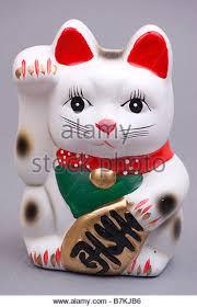 lucky cat stock photos lucky cat stock images