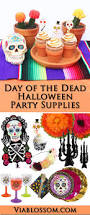 halloween party ideas for girls top 25 best halloween party supplies ideas on pinterest spider