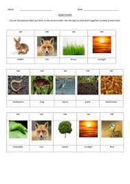 food chains cut and stick by markallder teaching resources tes