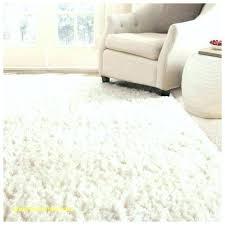 Soft Area Rug White Fluffy Area Rug Cozy Solid White Shag Rug White Plush