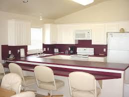 purple kitchen ideas designed in feminine style home design