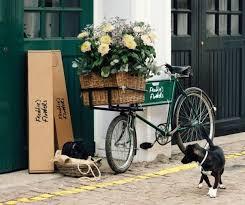 get flowers delivered get flowers delivered to your door 50 discount your two