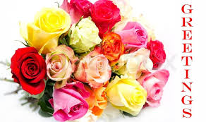 Colorful Roses Beautiful Flower Bouquet Of Colorful Roses On White Background
