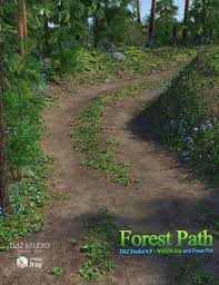 forest path 3d models and 3d software by daz 3d