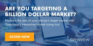 are you targeting a billion dollar market a guide to determining