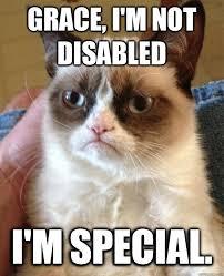 grace i m not disabled cat meme cat planet cat planet