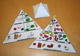 creating and educating food pyramids