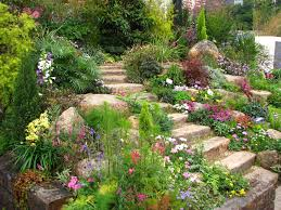 Small Rock Garden Design by Affordable Interiors Explorer Small Contemporary Garden Design