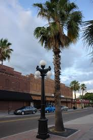 visco inc ybor city tampa florida ornamental street lighting from visco 800 341 1444
