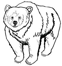 imagenes animadas oso oso para colorear para oso para colorear animadas efil info