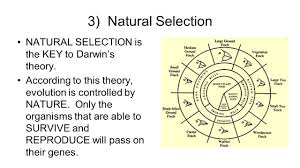 date april 19 2016 aim 75 how does evolution occur by natural