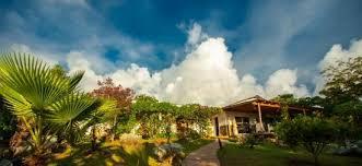 bartender resume template australia zoo expeditions maui to molokai best 25 hotel rapa nui ideas on pinterest ibiza españa ibiza