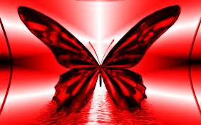 1427 red butterfly widescreen wallpaper walops com