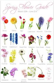 wedding flowers guide wedding flower guide link